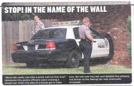 stop in the name of the law and the wall police car crash into wall