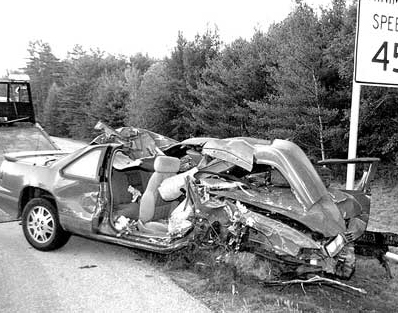 moose hit by car in fatalaccident